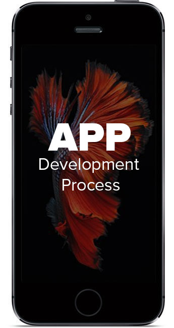 iphone_5s-aapDevelop